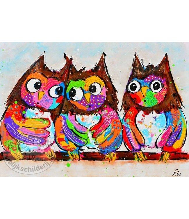 Poster uilen 70x50
