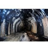 Victor M. Lansink Fahrnauer Tunnel