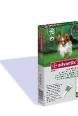 Bayer Advantix