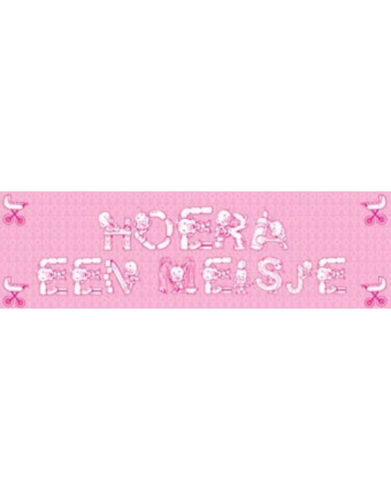 Banderola nacimiento Chica 1