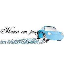 Banner Geburt Junge Auto