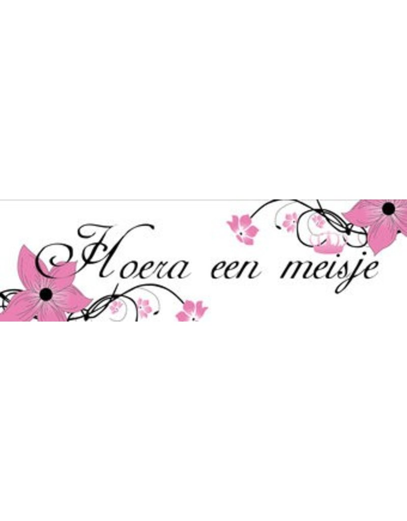 banner Birth girl Flower