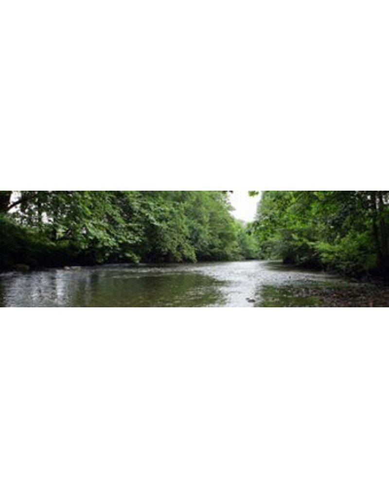 Río Lienzo exterior
