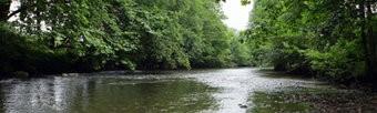 Fluss Textilposter Garten