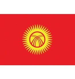 Kyrgyzstaanse vlag Sticker