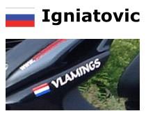 Bandera rusa con la vespa nombre de la etiqueta engomada