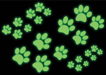 Paws stickers