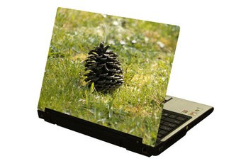 Dennenappel laptop Sticker