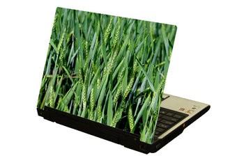 Kornfeld Laptop Sticker