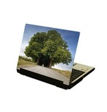 Große Bäume Laptop Sticker