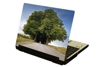 Grote bomen laptop Sticker