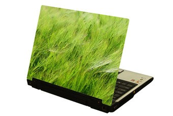 Hoog gras laptop Sticker