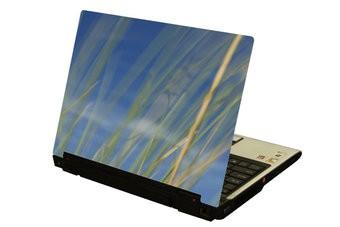 Roseau laptop autocollant