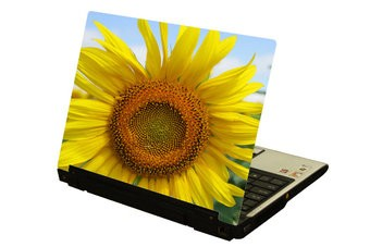 Girasol ordenador portátil pegatina