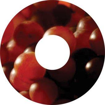 Speichenschutz Sticker Beeren