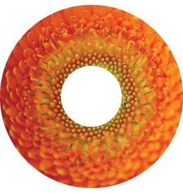 Speichenschutz Sticker Blüte