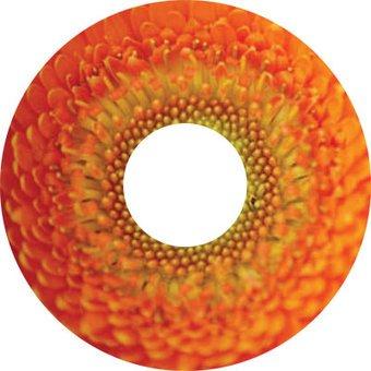 Spoke protector sticker inside Flower