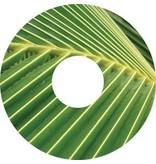 Speichenschutz Sticker Blatt