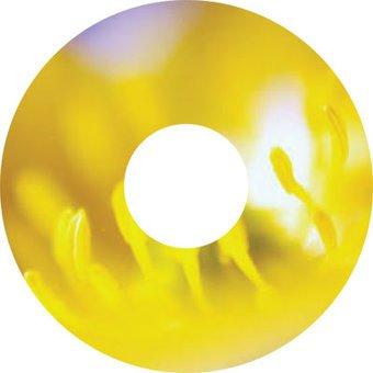 Pegatina protector de radios amarillo flor