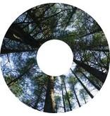 Spaakbeschermer sticker Bomen
