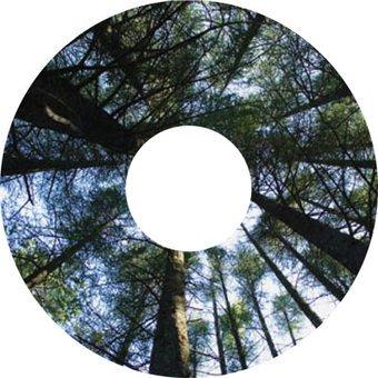 Speichenschutz Sticker Bäume