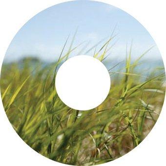 Pegatina protector de radios hierba