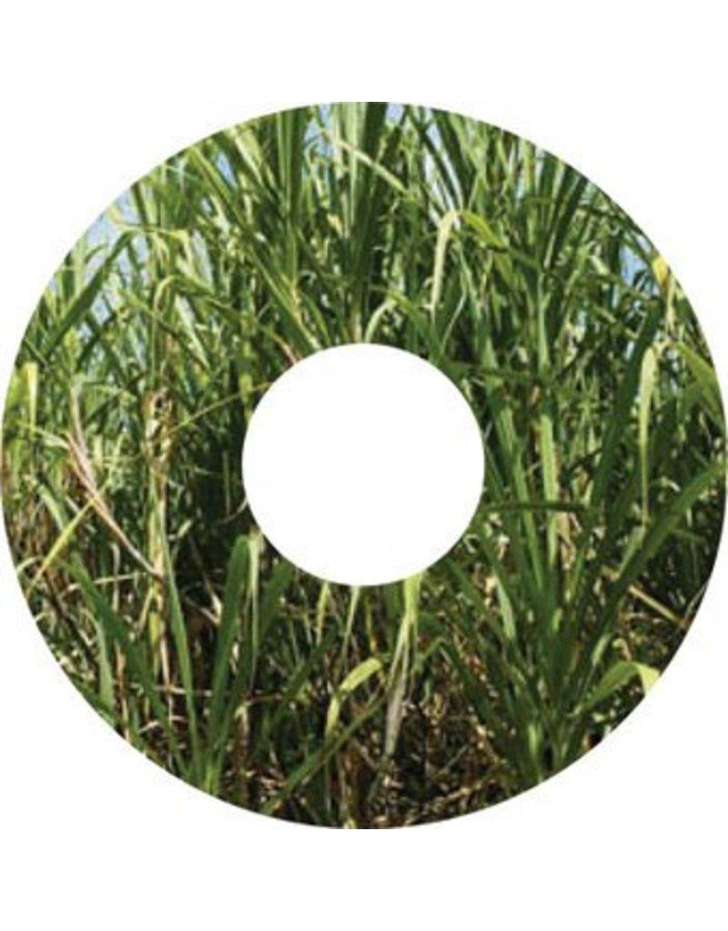 Speichenschutz Sticker Gras