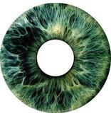 Pegatina protector de radios iris gris