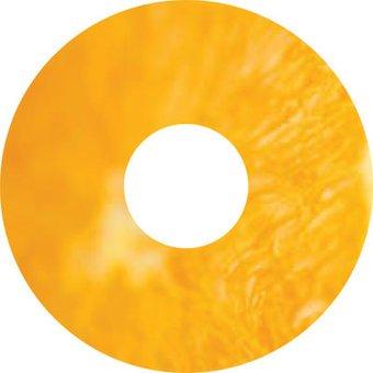 Speichenschutz Sticker Mandarine