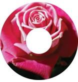 Pegatina protector de radios caspa rosa