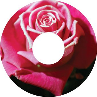 Spoke protector sticker Rose
