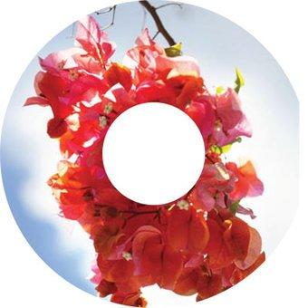 Pegatina protector de radios rosa planta