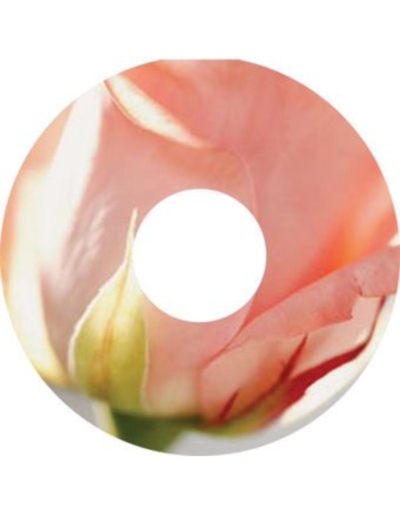 Spoke protector sticker Pink Rose
