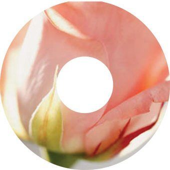Spoke protector sticker Pink Rose