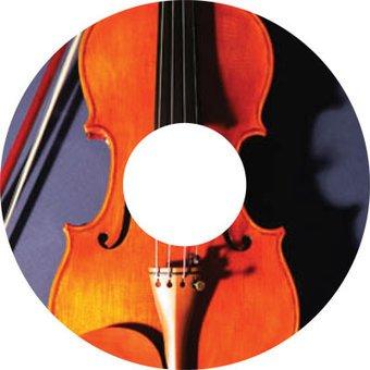 Spoke protector sticker Violin 2