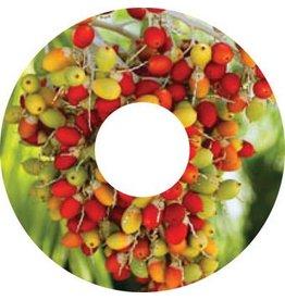 Spoke protector sticker Wild Berries