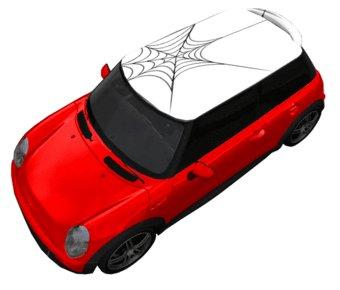 Dak sticker spinnenweb