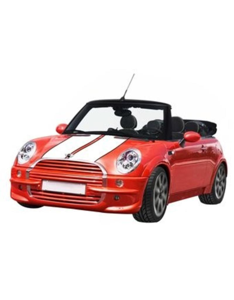 Mini striping (Motorhaube) 1