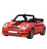 Mini striping (Motorhaube) 3