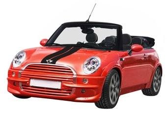 Mini striping (Motorhaube) 6