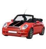 Mini striping (Motorhaube) 10