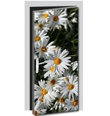 Flowers Door sticker