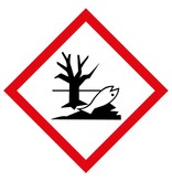 GHS09 - Polluant