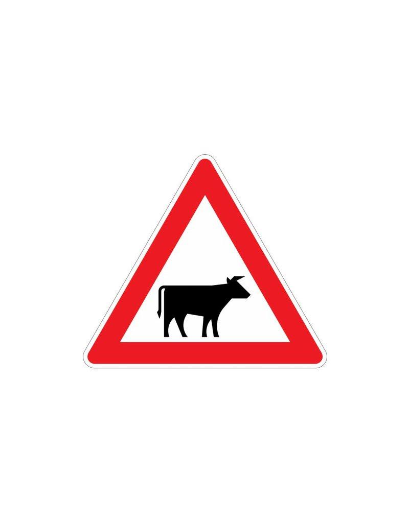 Pas op vee