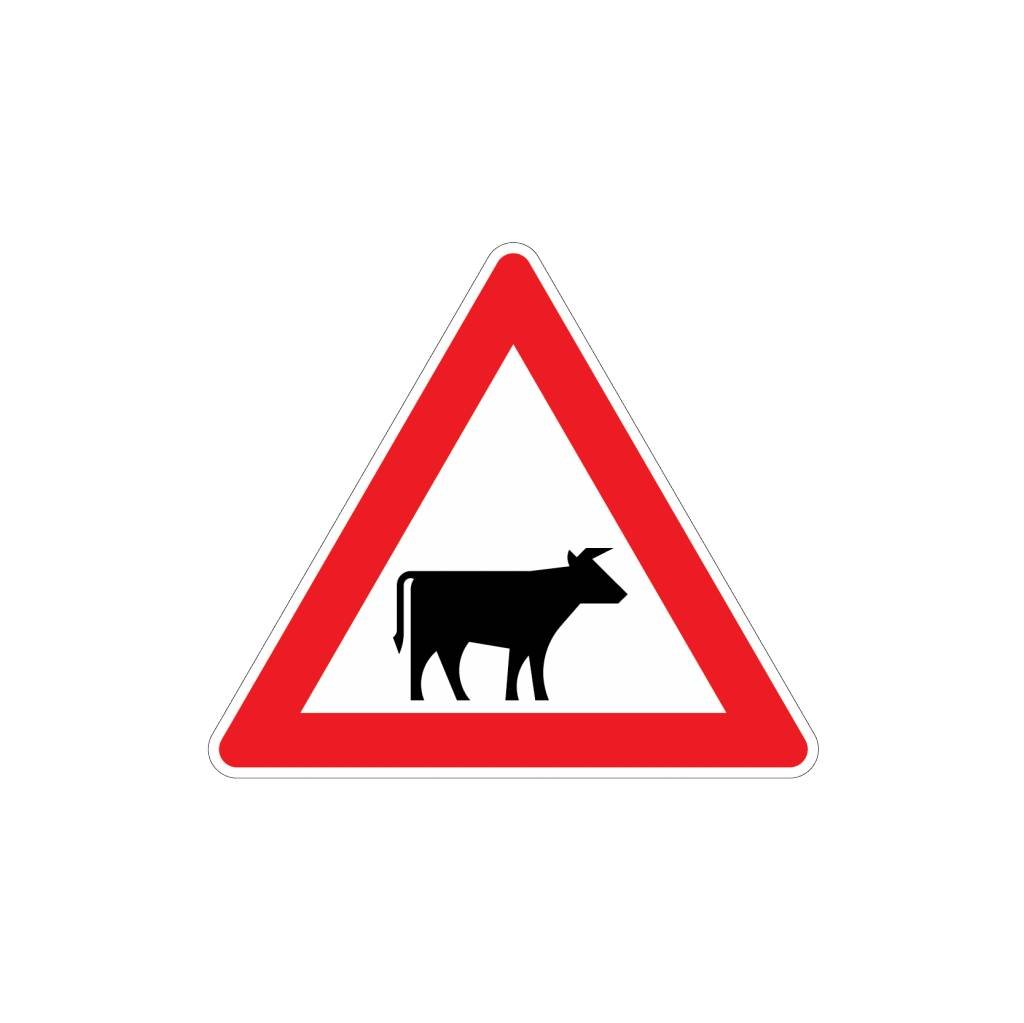 Be aware cattle