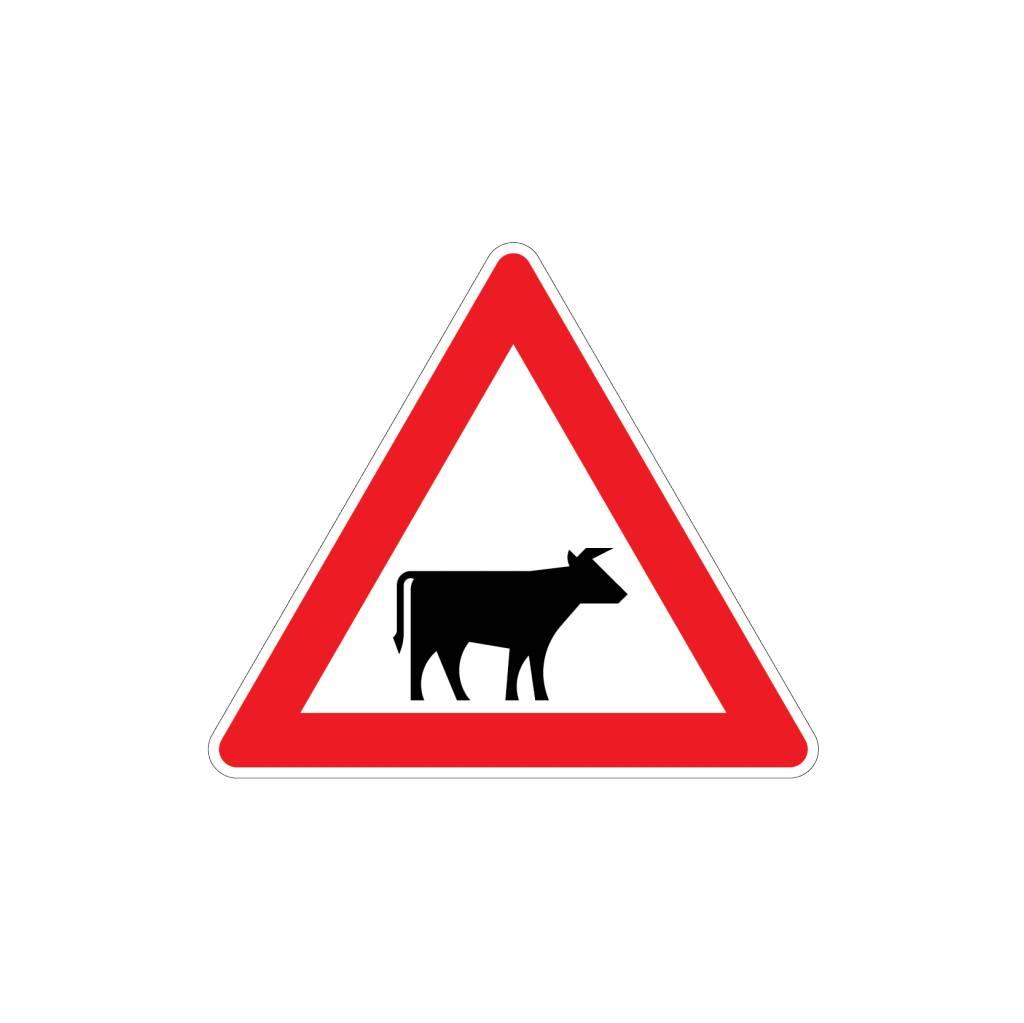 Méfiez-vous des bovins Autocollant