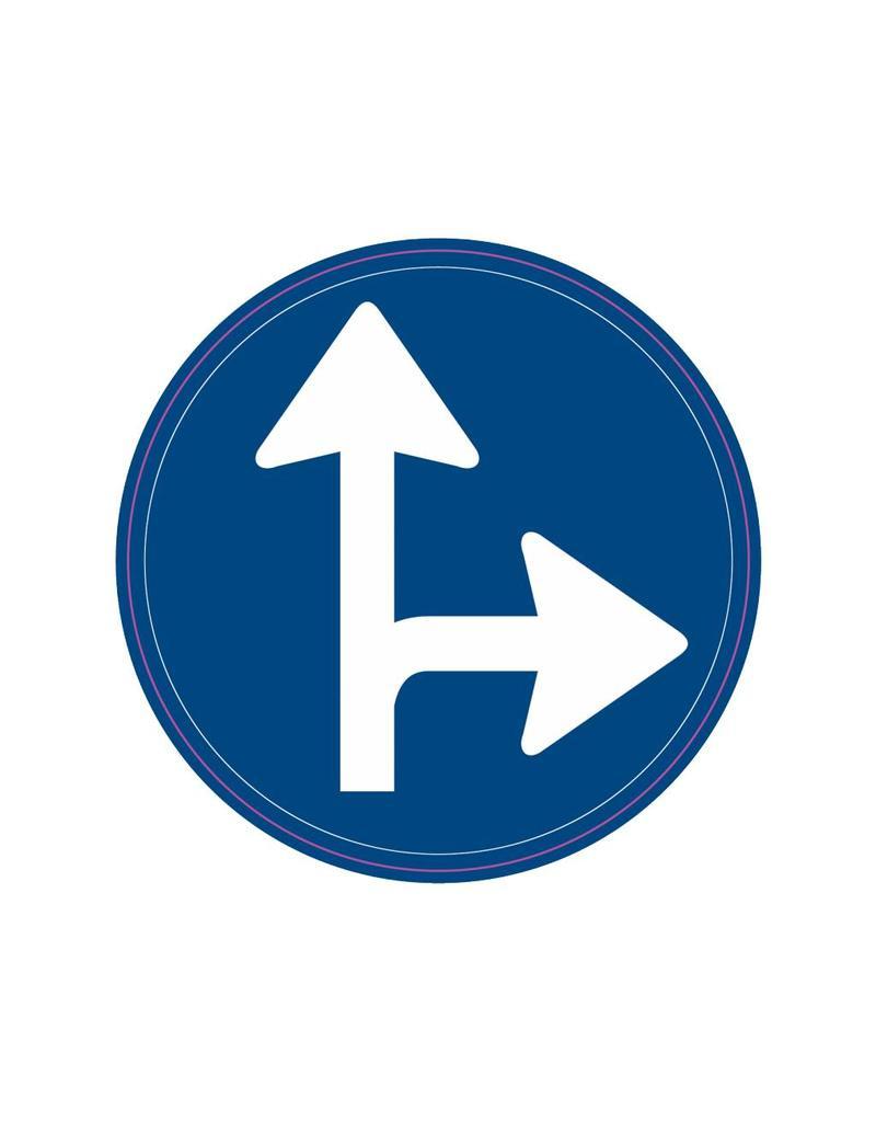 Vorgeschriebene Fahrtrichtung - geradeaus und rechts
