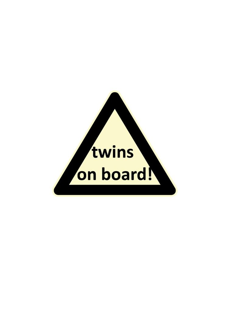 Baby on Board driehoek twins