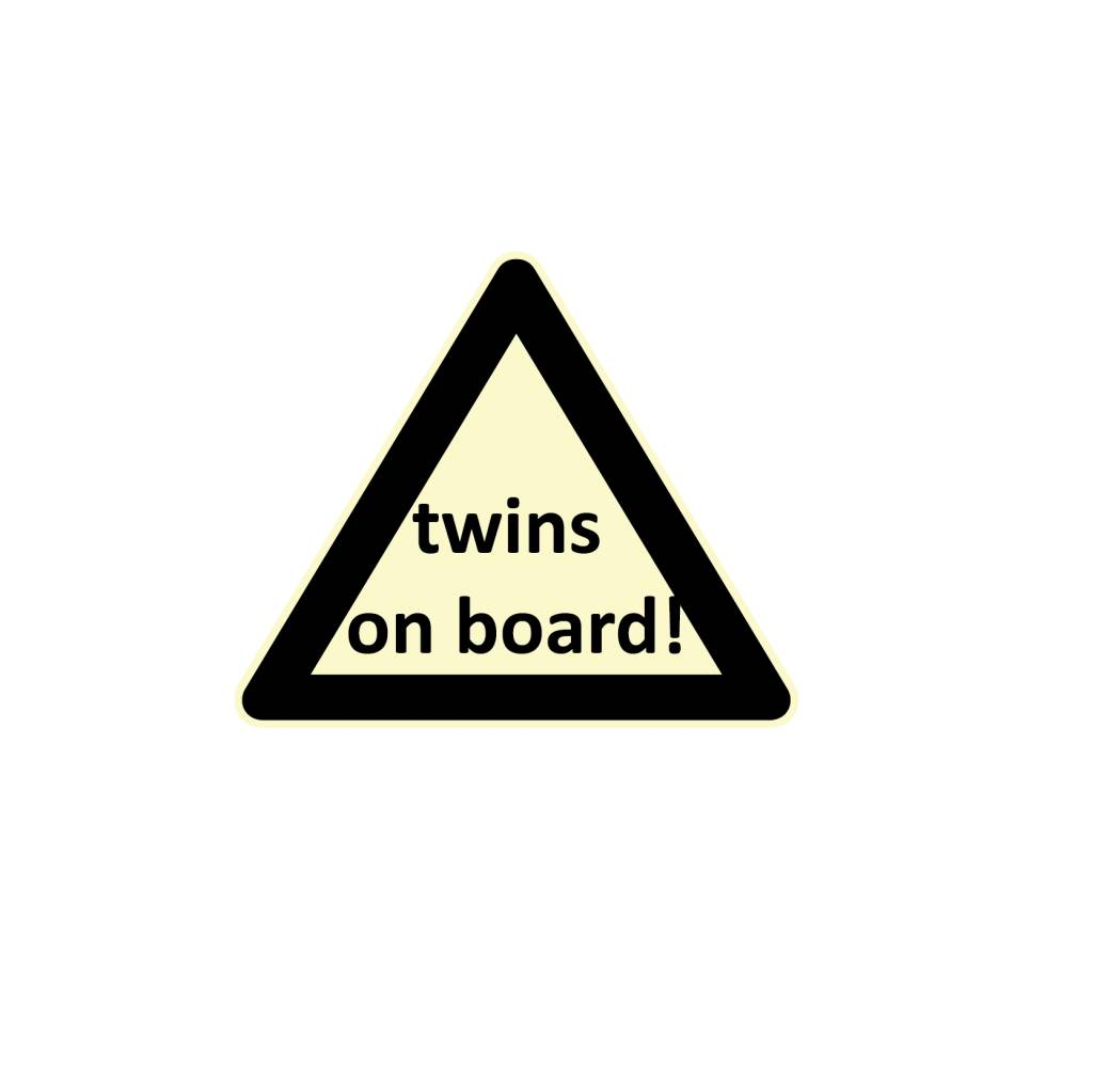 Baby on Board triangle twins