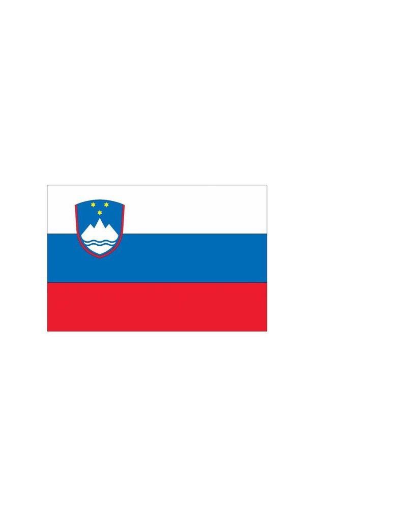 Sloveense vlag Sticker